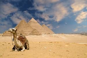 Autopůjčovna Káhira