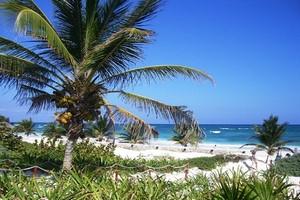 Autopůjčovna Cancun